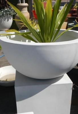 Rio Bowls