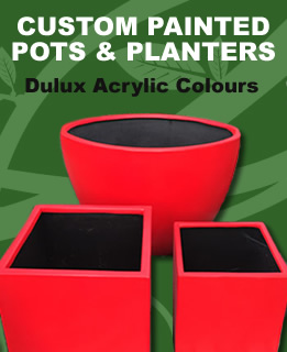 Custom Painted Pots
